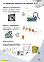 IM-infomicroscòpia